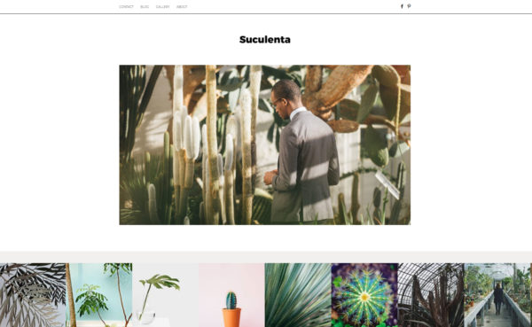 suculenta theme | premium Wordpress theme