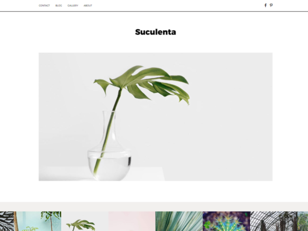 premium theme wordpress suculenta theme